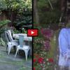 Bill Gates prijal ľadovú výzvu Marka Zuckerberga, VIDEO v článku