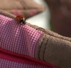 Správny výber pracovných rukavíc vám zabezpečí efektívnu ochranu